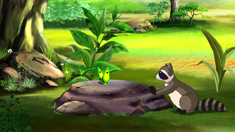 Raccoon and Butterfly UHD Animation