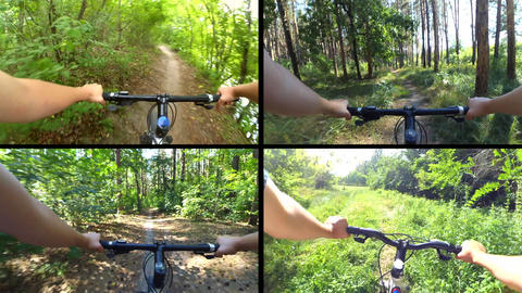 Person cycling on bicycle ride green forest on sunny day Footage
