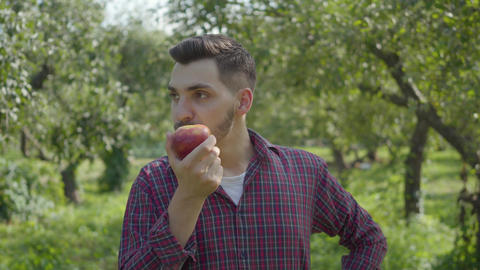 Young confident bearded farmer walking through the garden eating a tasty apple Footage