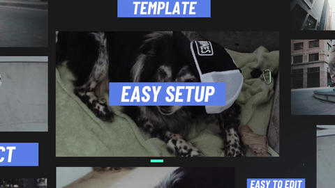 Request Slideshow After Effects Template