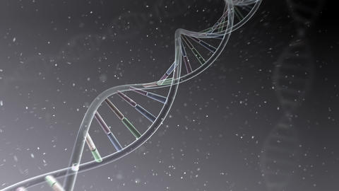 DNA Strand Genome image 4 A4f 4k Animation