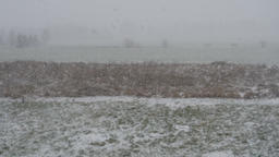 Winter landscape of falling snow over a rural area. Slow Motion Footage