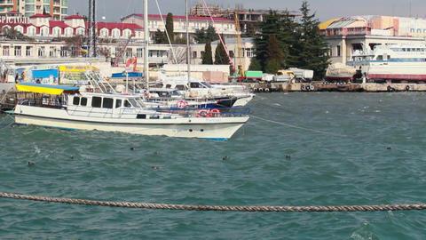 Rocking yachts at the pier in Yalta, Crimea, Ukraine Footage