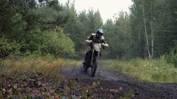 riders on motorcycles driving on a dirt road in woods Footage