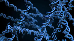 DNA strand code. Abstract 3d polygonal wireframe DNA molecule helix spiral. Loop animation Animation