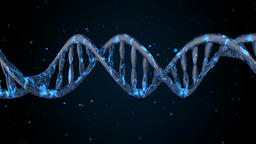 DNA strand fly in. Abstract 3d polygonal wireframe DNA molecule helix spiral Animation