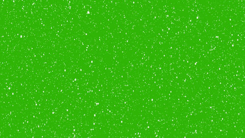 Realistic snow falling on green background. Isolated Flakes to down, Christmas animation with alpha Animation