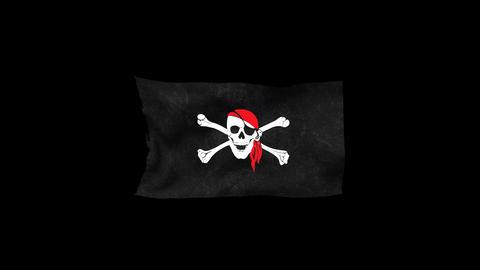 Pirates' Black Flag 4 Animation