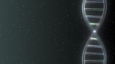 DNA Strand Genome image 5 A2e 4k Animation