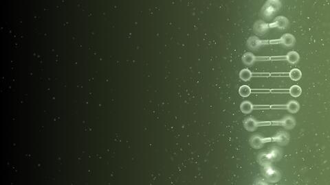 DNA Strand Genome image 5 B2g 4k Animation