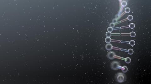 DNA Strand Genome image 5 B4a 4k Animation