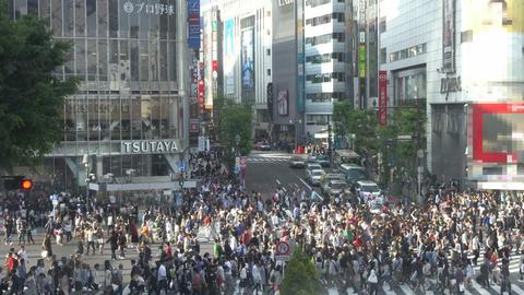 Shibuya Crossing Footage