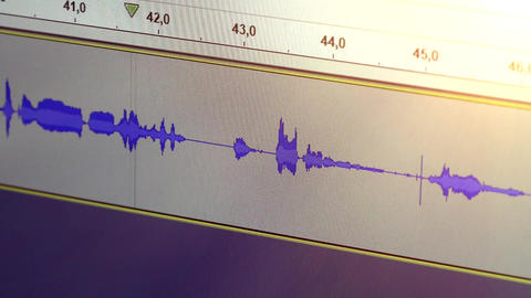 Voice Recording Track From Audio Editing Software (1) Live Action