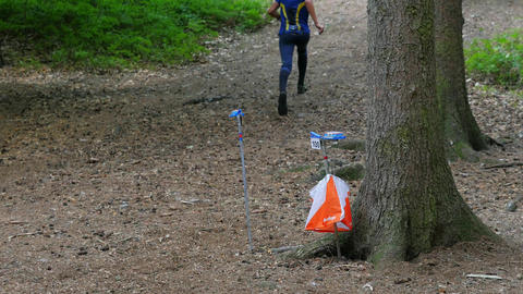 Checkpoint check. Sports person participants of orienteering or rogaining run. Runner wear Footage