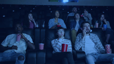 Students girls and guys watching film in cinema looking at screen with attention Live Action