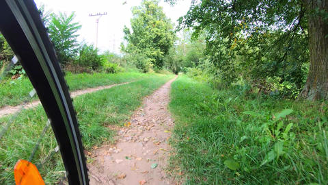 Bicycle riding on bike lane, green trees, power poles, wheel Live Action