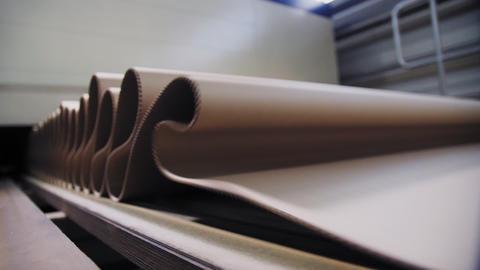 conveyor belt transports cardboard paper in factory workshop Footage
