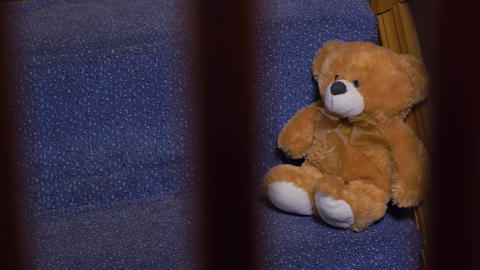 Teddy Bear Toy On Stairs, Live Action