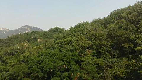 Landscape Of Mountain And Forest 0