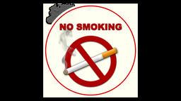 Realistic No Smoking 4 Animation