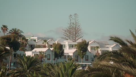 White houses amid lush palm trees Live Action