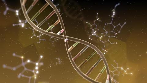 DNA Strand Genome image 6 A2b 4k Animation