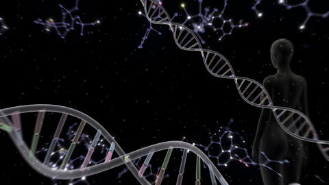 DNA Strand Genome image 6 A56d human 4k Animation