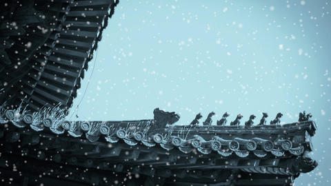 weeds grass & sculpture on roof eaves in winter... Stock Video Footage