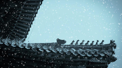 weeds grass & sculpture on roof eaves in winter snow.China ancient architect Footage