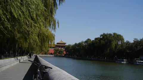 Chinese ancient buildings tower & willow relying on... Stock Video Footage