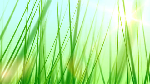 BG GRASS 002 24fps Animation