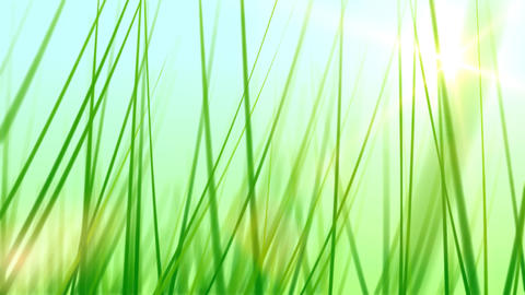 BG GRASS 002 30fps Animation