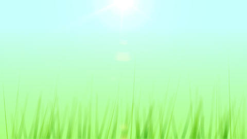 BG GRASS 003 25fps Animation