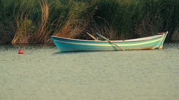 Small Rowing Boat on the lake Footage