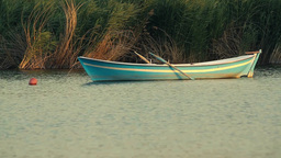 Small Rowing Boat on the lake Stock Video Footage