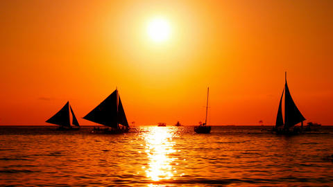 Sailboats at sunset Footage