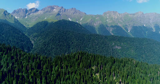 The mountains on the rocky Caucasus mountains covered with dense pine forest Live Action