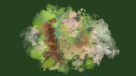 Green, pink and brown watercolor blot appears on the alpha channel Animation