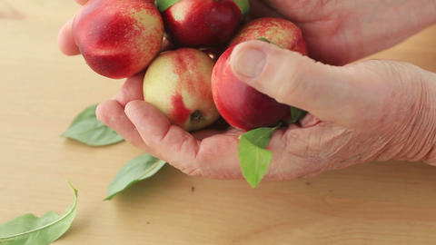Man with fresh nectarines Footage