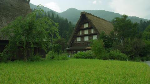 Sightseeing gifu shirakawagou V1-0018 Footage