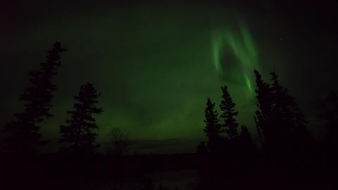 Yellowknife,Canada-August 31, 2019: (Real time Live action, not time-lapse) Aurora borealis or Live Action