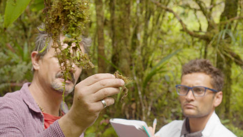 Botany Teacher With His Student Taking A Sample Of A Plant In Ecuador Live Action