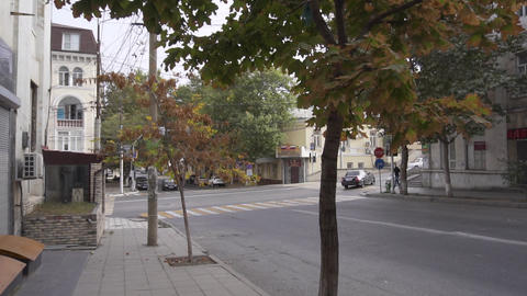 View of street, road with cars and two storey houses, trees with yellow leaves Live Action