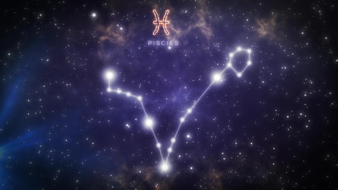 Zodiac Horoscope Constellations 0