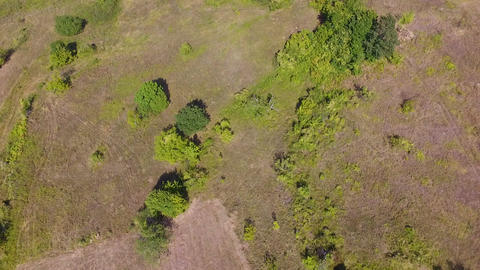 Aerial drone footage of countryside. Beautiful landscape with trees and fields Live Action