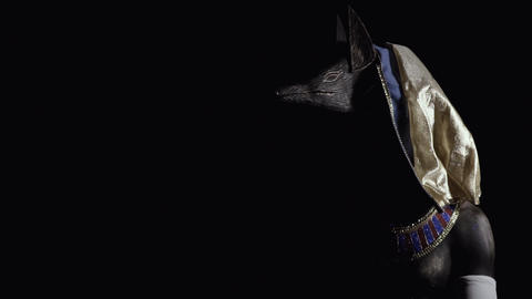 Anubis in a dark room with half of his face visible, dramatic lighting Live Action