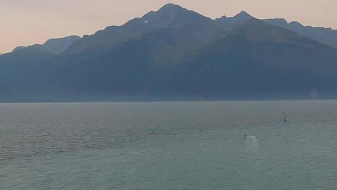 Wild Alaska 0