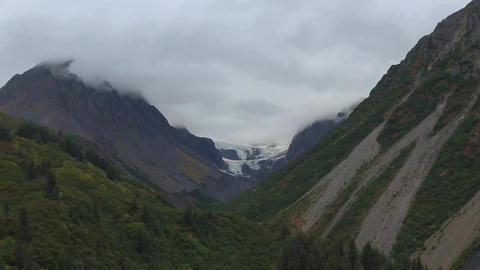 Wild Alaska 1