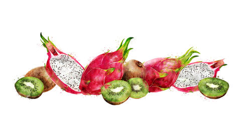Watercolor animation of the dragon fruit and kiwi on the alpha channel CG動画