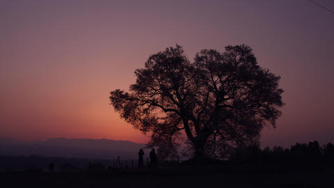 Sky sunrise V1-0002 Footage